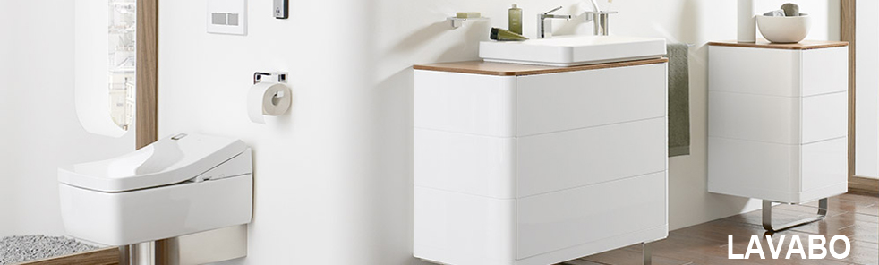 Lavabo thiết bị vệ sinh toto